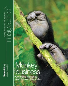 mag cover monkey