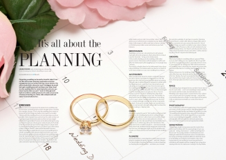 DPS Planning_HITCHED17.indd